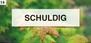 Schuldig 2014-09-10 om 13.34.20