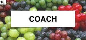 coach 2014-09-24 om 16.03.15